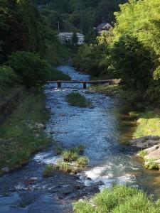 雰囲気バッチリの青蓮寺川
