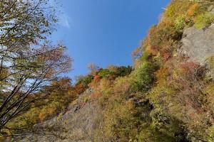 三星山では曇り空の悪天候男でしたが、高野龍神スカイラインでは見事な晴れ男。素晴らしい紅葉を見る事が出来ました。