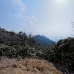 玉置山山頂から見た宝冠の森方面