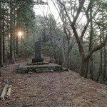 宝冠の森への分岐点