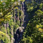 中の滝とシロヤシオ